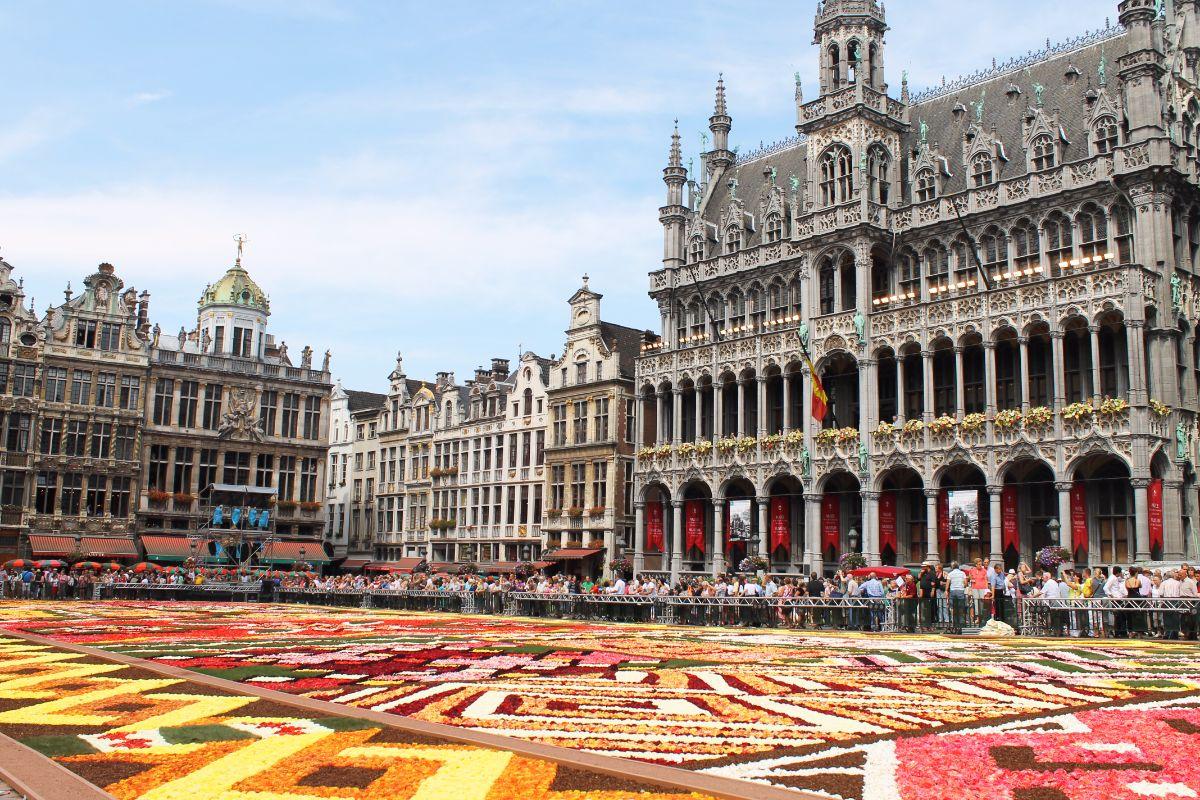 картинки бельгия турция мне